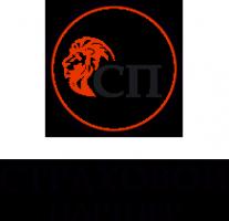 Логотип компании Страховой партнер