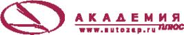Логотип компании Академия плюс сеть магазинов автозапчастей для американских
