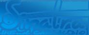 Логотип компании SINATRA