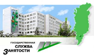 Логотип компании Центр информационного сопровождения инвестиционных проектов
