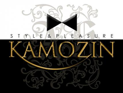 Логотип компании Style & pleasure