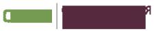Логотип компании BestОчагLED24