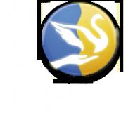 Логотип компании Огни Енисея