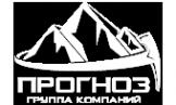 Логотип компании Прогноз-Изыскания